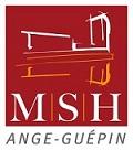 MSH Ange Guépin à Nantes